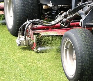 草刈り、清掃について