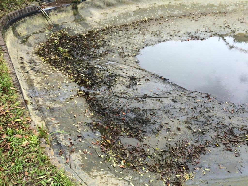 池の清掃及びシートの張替え・補修について